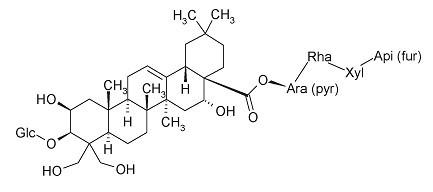 PlatycodinD/桔梗皂苷D(58479-68-8,C57H92O28)98.5% 纯化研发定制