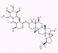 Astragaloside III/黄芪皂苷III(84687-42-3,C41H68O14)98.5% 纯化研发定制