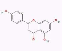 Apigenin/芹菜素(520-36-5,C15H10O5) 98.5% 纯化研发定制