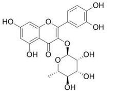 Quercitrin/槲皮苷(522-12-3,C21H20O11) 98.5% 纯化研发定制