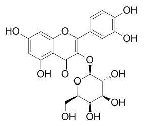 Hyperoside/金丝桃苷(482-36-0,C21H20O12) 98.5% 纯化研发定制