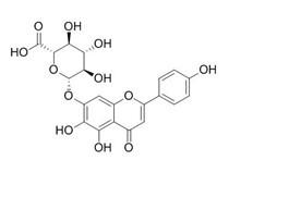 Scutellarin/野黄芩苷,高黄芩苷(27740-01-8,C21H18O12) 98% 纯化研发定制