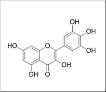 Myricetin/杨梅素(529-44-2,C15H10O8) 98% 纯化研发定制