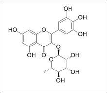 myricitrin/杨梅苷(17912-87-7,C21H20O12) 98% 纯化研发定制
