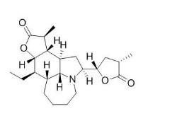 tuberostemonine/对叶百部碱(6879-1-2,C22H33NO4)98.5% 纯化研发定制