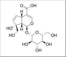 Monotropein/水晶兰苷 (5945-50-6,C16H22O11) 98% 纯化研发定制